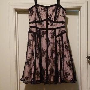 City Chic Lace Lavinia Dress